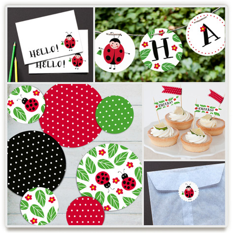 Little Ladybug Party Decor