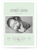 Custard Foil-Pressed Birth Announcement Cards