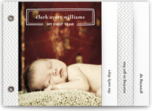 My First Year Birth Announcement Minibook™ Cards