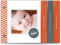Chevron Hello Birth Announcement Minibook™ Cards