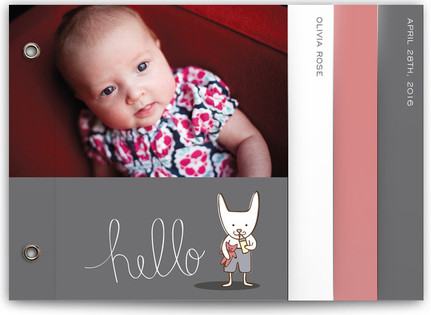 Baby Bunny Birth Announcement Minibooks