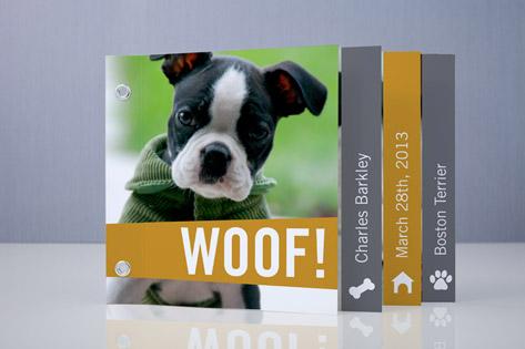 Woof! (Hello!) Birth Announcement Minibook™ Cards