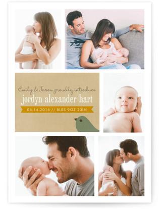 Multi-Treat Birth Announcement Postcards
