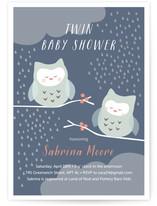 Twin Owl Babies