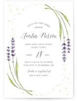 lavender frame