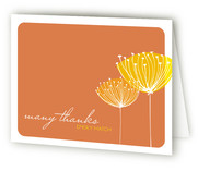 Virginia Birth Announcements Thank You Cards