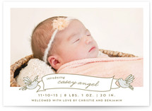 Birds and Banner Birth Announcements