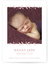 Acorn and Twig Frame Birth Announcements