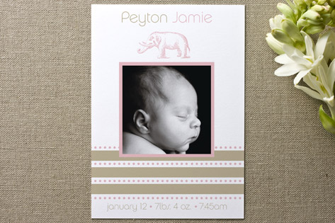 Elephant Birth Announcements