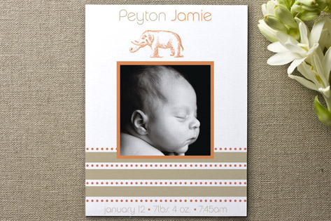 Elephant Birth Announcements