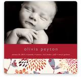 Genevieve Birth Announcements
