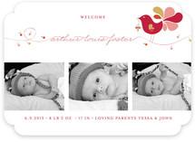 Little Bird Birth Announcements