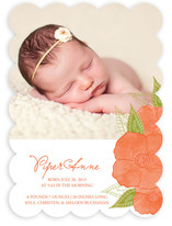 Poppies in Watercolor Birth Announcements