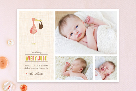 Sweet Stork Birth Announcements
