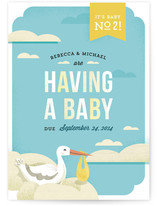The Stork's Surprise Birth Announcements