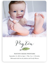 Beloved Birth Announcements