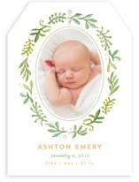 Garden Of Ivy Birth Announcements