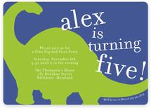 Bronto Party Children's Birthday Party Invitations