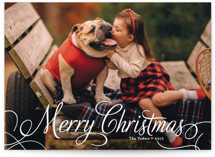 Classic Merry Christmas Photo Cards