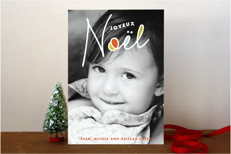 A New Noel Christmas Photo Cards