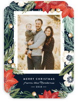 Winter Botanicals