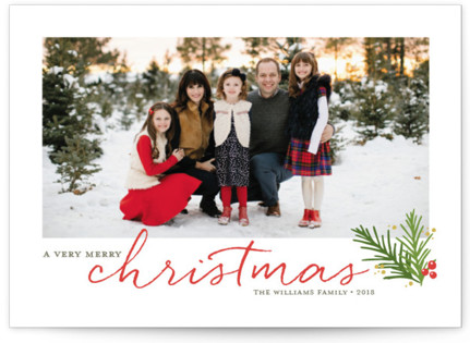 A Merry Sprig Christmas Photo Cards