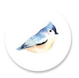 Bluebird by kelli hall