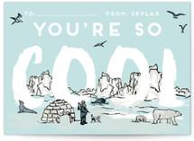 Arctic Cool