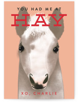 Hay is for Horses by Itsy Belle Studio