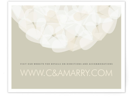 Modern Tulle Directions Cards