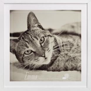 Purrfect Companion Custom Photo Art Print