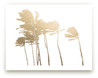 Palm Trees in the Wind... by BeachPaperCo