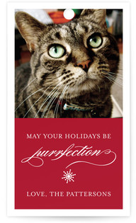 Purrfection Gift Tags