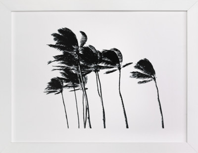 Palm Trees in the Wind Art Print