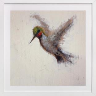 Small Hummingbird Art Print
