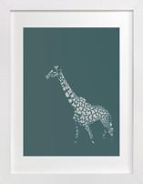 fading giraffe