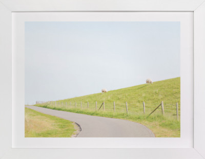 A Woolly Path Art Print