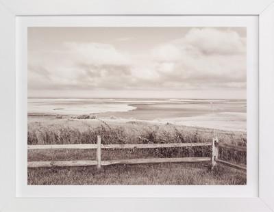 monochrome wetland Art Print
