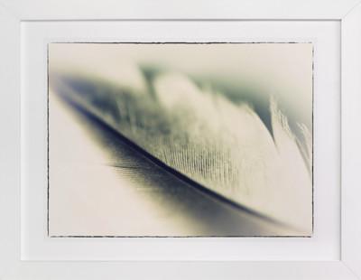 VINTAGE FEATHER Art Print