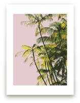 Poster Palms