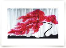 Cherry Blossom Tree by Niniane Wang