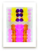 Hot pink by Kristi Kohut - HAPI ART AND PATTERN