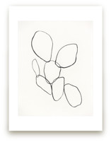 Cactus Line Drawing by Amanda Phelps