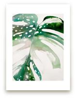 Begonia Monsteras by jinseikou
