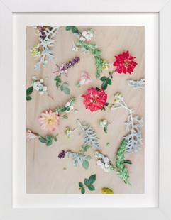Falling Flora Art Print