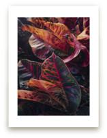 shaded 1 by Kamala Nahas