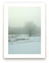 Winter Fog by Paul Hodges