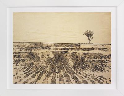 Fanning Fields Art Print