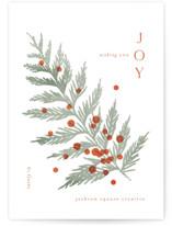 Mod Cedar by Kristie Kern