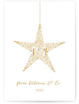 Star of Joy Xmas by andrea espinosa